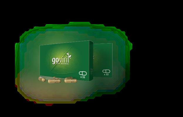 acheter pilule Goviril